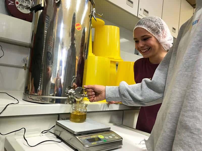 Fleißige Bienen am Werk – Die Bienen-AG des DBG füllt den ersten Honig ab